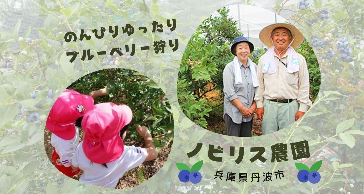 兵庫県丹波市ノビリス農園
