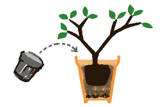 ブルーベリー苗の植え変え画像