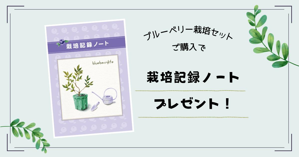 栽培ノートプレゼント