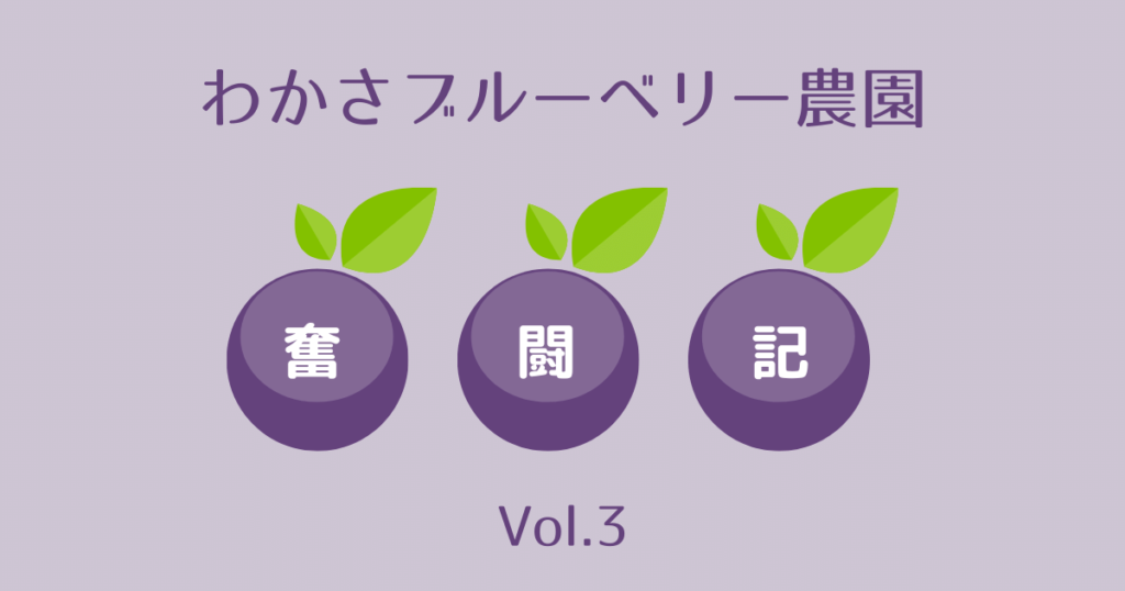 わかさブルーベリー農園奮闘記vol.3