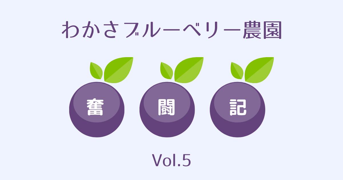 わかさブルーベリー農園奮闘記vol5