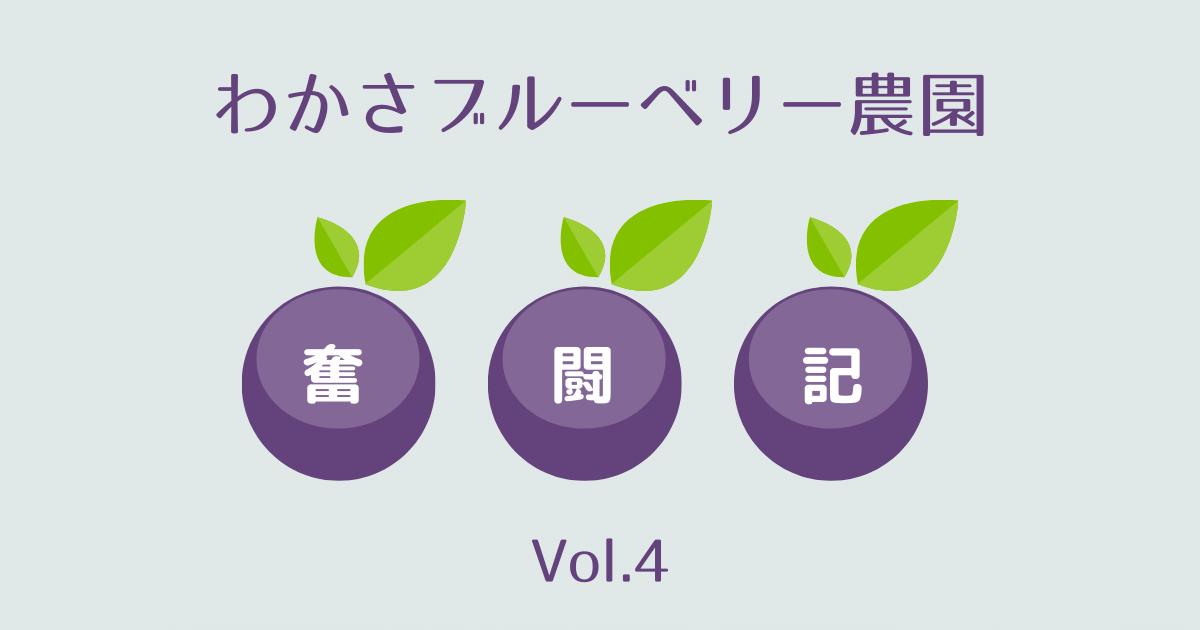 わかさブルーベリー農園奮闘記vol.4